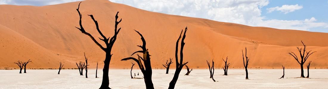 bandeau_haut_home_namibie